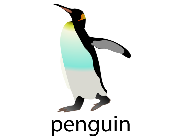 Animal Flashcards - Penguin