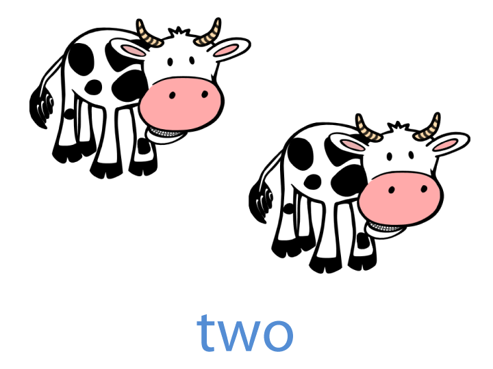two cows flashcard