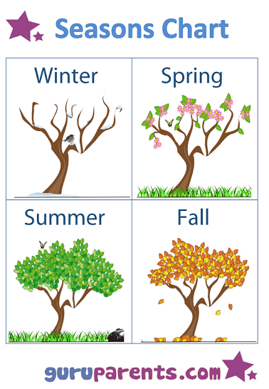 Seasons Chart Trees Northern Hemisphere