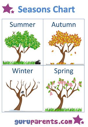 Seasons Chart Trees Southern Hemisphere